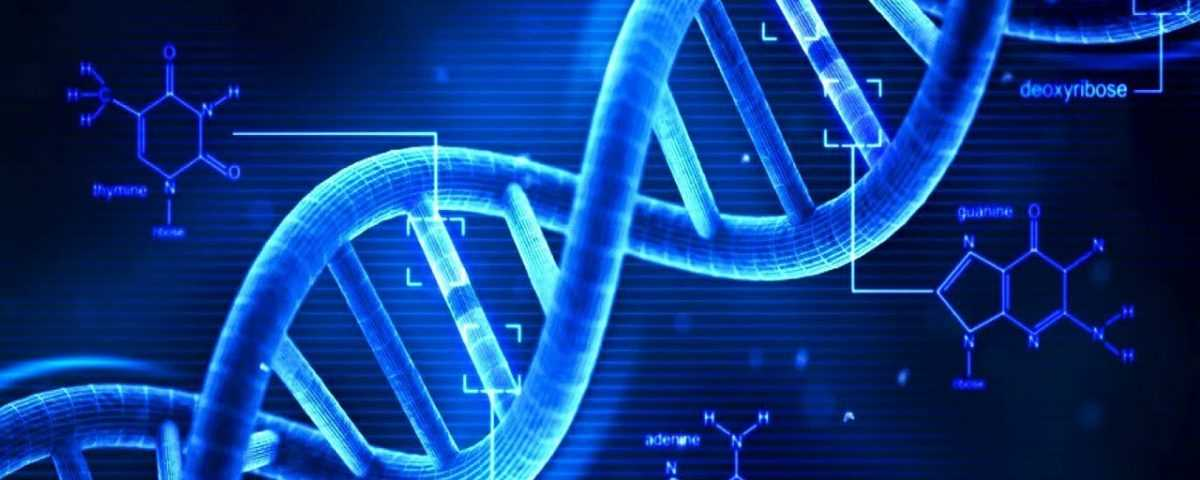 آزمایش ژنتیک