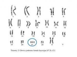 آزمایشگاه تخصصی ژنتیک رصد