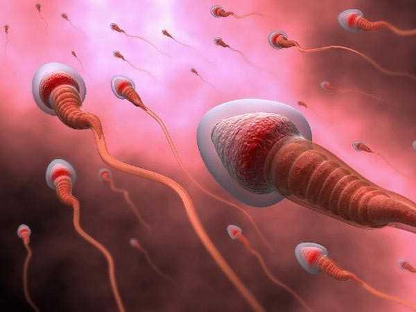 آزمایش ژنتیک اسپرم