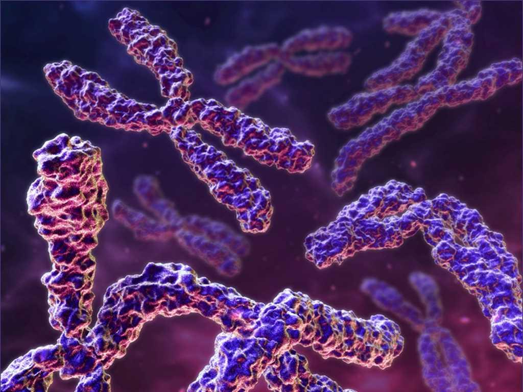 نارسایی ژنتیکی
