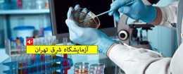 آزمایشگاه شرق تهران