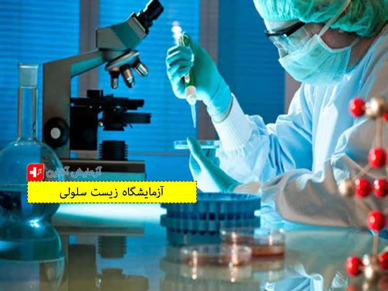 آزمایشگاه زیست سلولی