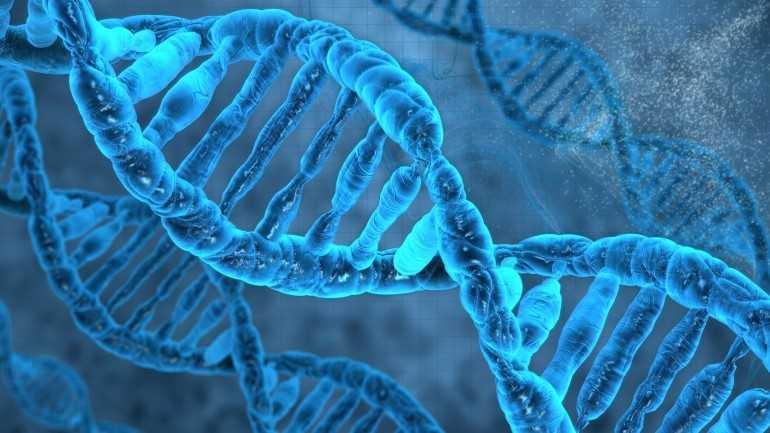 آزمایشگاه زیست سلولی dna